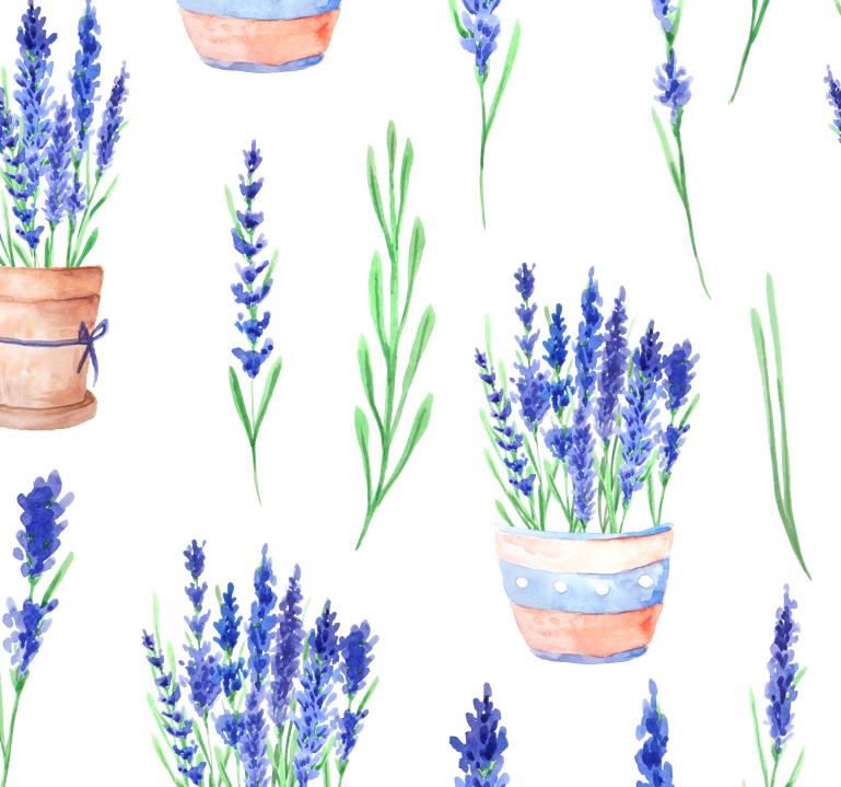 hoa lavender tách nền PNG
