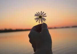 NHÀ VỠ NỢ, TỪ BỐC VÁC THUÊ TỚI CÓ CÔNG VIỆC YÊU THÍCH ĐẦU TIÊN