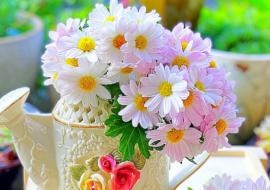 Tặng anh một bó hoa cúc dại, câu chuyện tình yêu cuộc sống